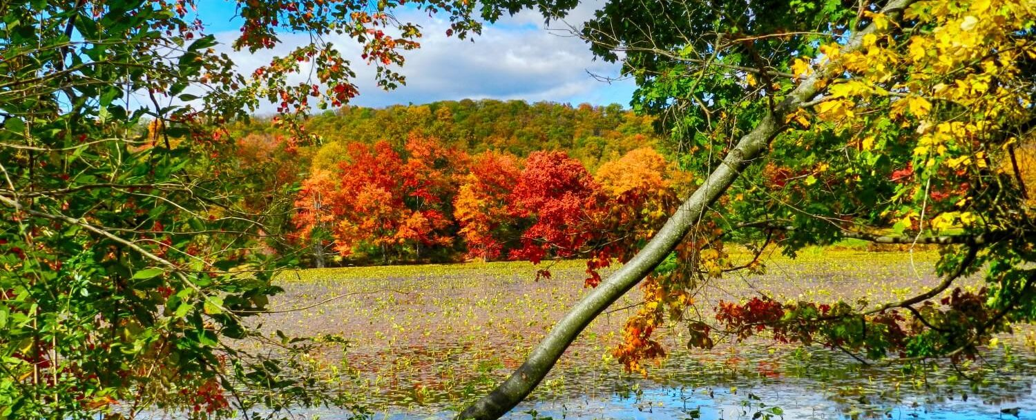 Autumn is a great time to go on the hiking trails in the Poconos.