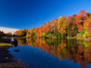 Lake Naomi in the poconos in the fall