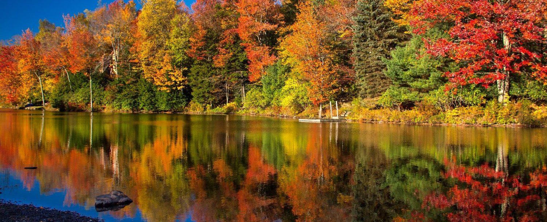 view of fall foliage in the poconos at lake naomi