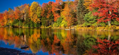 view of fall foliage in the poconos at lake naomi