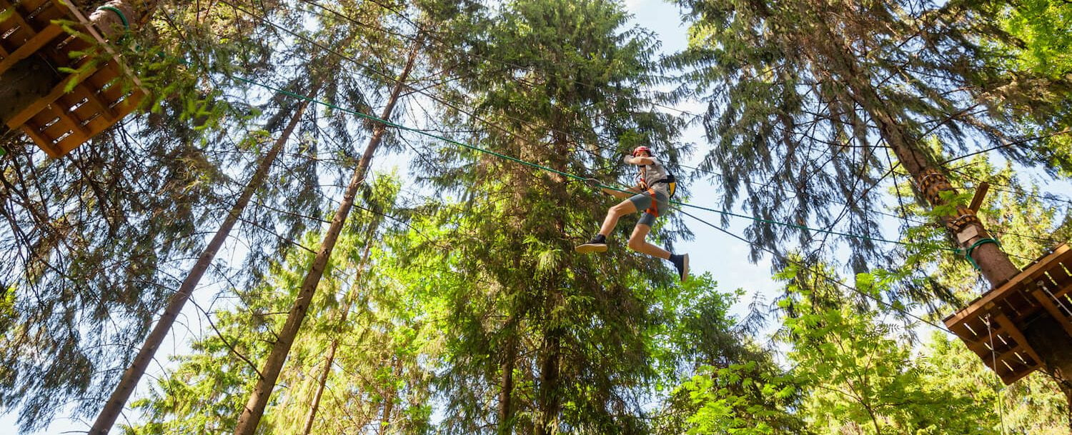 Person zip lining through the trees.