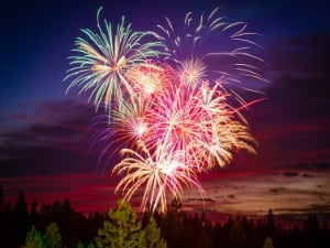 Colorful fireworks over green trees